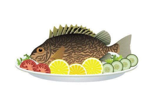 איזה-דגים-כשרים-73963279-[Converted]