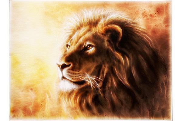 יתגבר כארי – זמן קריאת שמע ותפילה