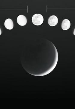 כל חודש מחדש. סיפורו המרתק של הירח