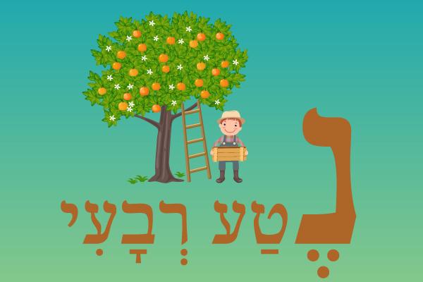 מושגים ביהדות באות נ'