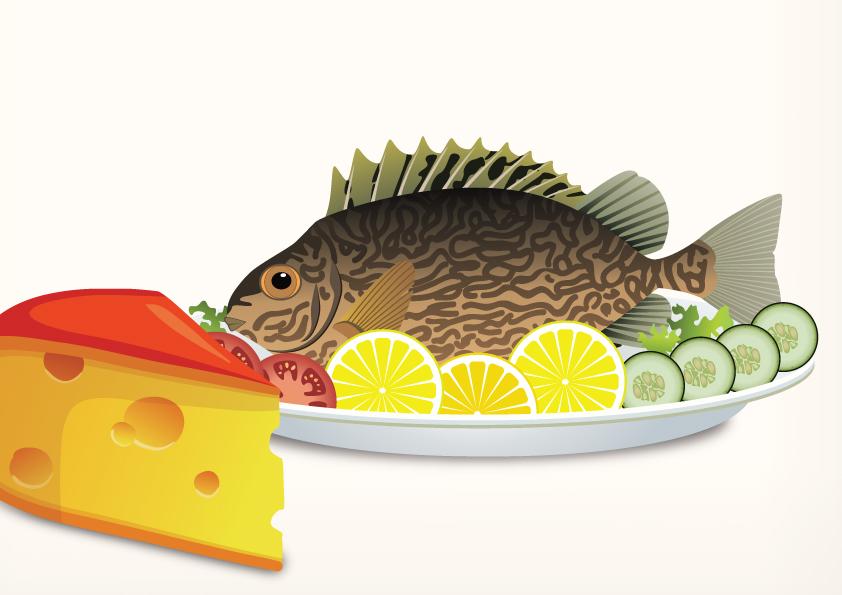 האם מותר לאכול דג וחלבי ביחד?