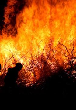 האש והלהבות השתוללו והיא נלחמה על ילדיה