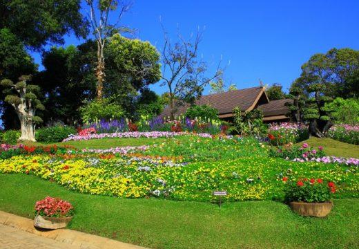 בית טובל בצמחיה נוף (Small)