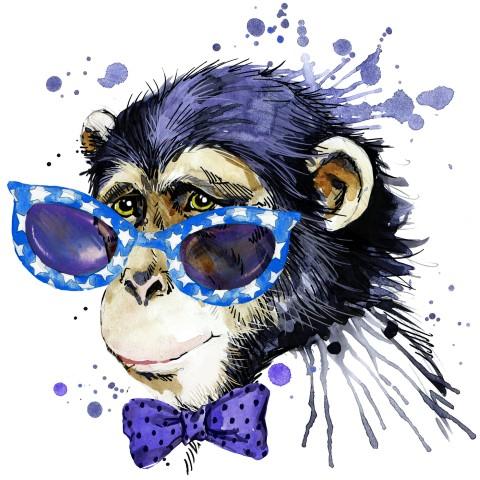 אנשי הכפר בג'ונגל ריכזו את כל חסכונותיהם וקנו את כל אלפי הקופים.