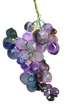 מותר לשתות מיץ ענבים שנסחט בשבת?