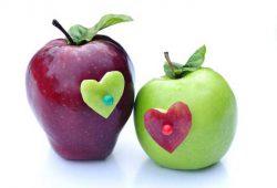 החתן שהחליט לקדש את כלתו בתפוח זהוב במקום טבעת יהלום - שיעור 11