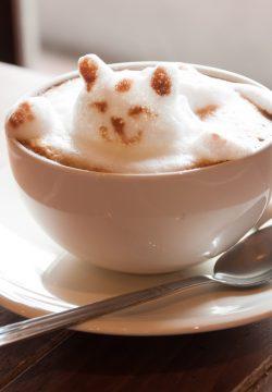 אני נמצא בבית קפה עם משפחתי ובאמצע ברכת המזון שואלים אותי משהו, מותר לענות?