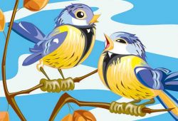 תרחיש מוזר: ''כל ערב מגיעה הציפור לחלון שלי ונוקשת ממושכות''