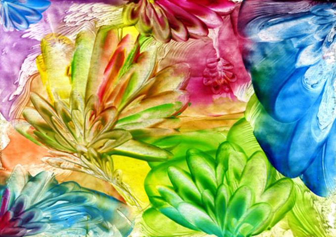 פרחים המתים אוהבים
