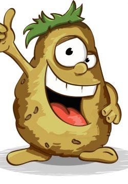 איך לבחור תפוחי אדמה מתאימים לקומזיץ'