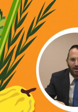 צפו: ענייני חג הסוכות – עם הרב יונה פיינהנדלר